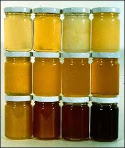 farba-kvetovych-medov.jpg